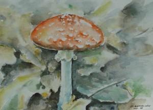 paddestoel-aquarel